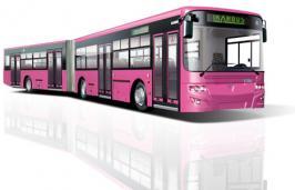 Автобус Тушино-Авто IK218 N. Техническая характеристика
