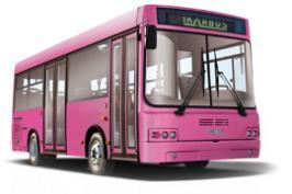 Автобус Тушино-Авто IK107. Техническая характеристика