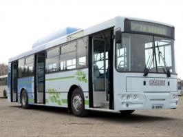 Автобус Ikarbus IK-103. Техническая характеристика