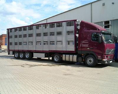 Скотовоз трёхэтажный Тонар-9826