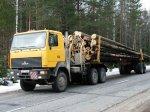 Белорусские МАЗы отправятся на выставку «Русский лес- 2008».