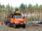 Лесным хозяйствам нужны КрАЗы