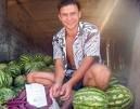 Россия разрешила Молдавии экспортировать растениеводческую продукцию в полн ...