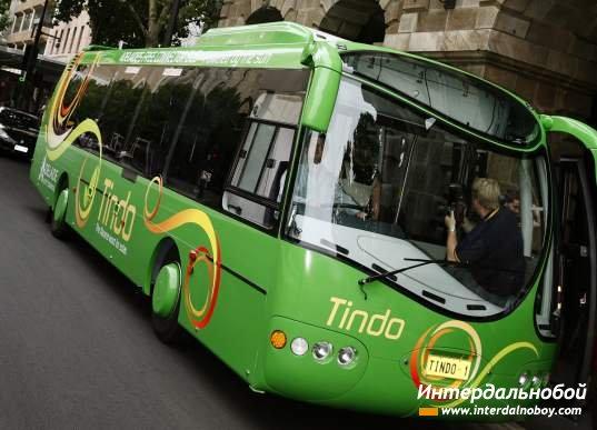 Tindo автобус солнца